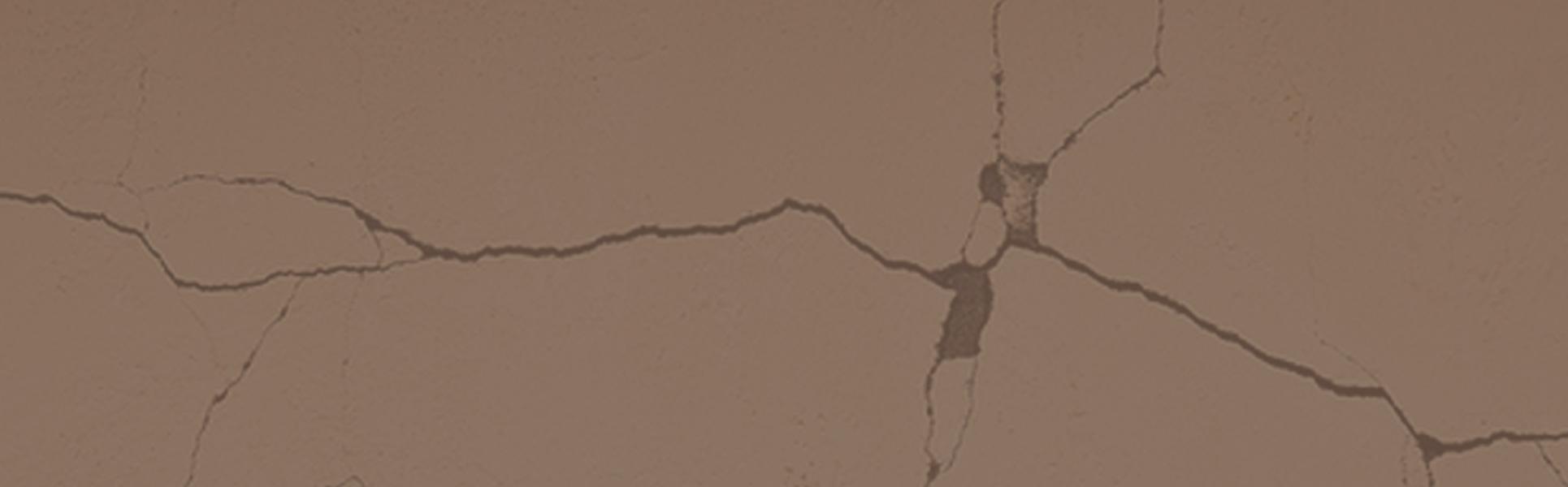 Le Cause delle Crepe nei Muri – Come e Perché si Formano le Crepe