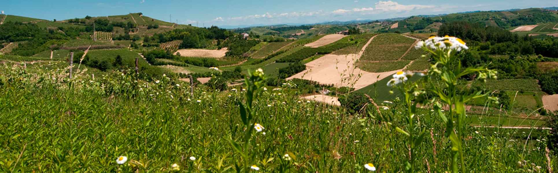 Consolidamento Fondazioni in Piemonte